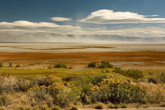 18 Antelope Island 8 550