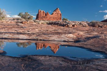 Arches Reflection