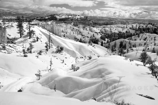 Bryce Canyon In Winter BW 550
