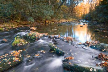 Cataloochie Creek