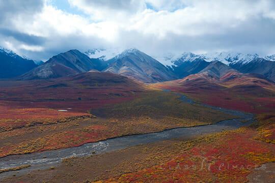 Deanli Tundra View 550