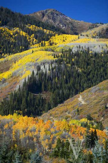 Deer Valley In Fall