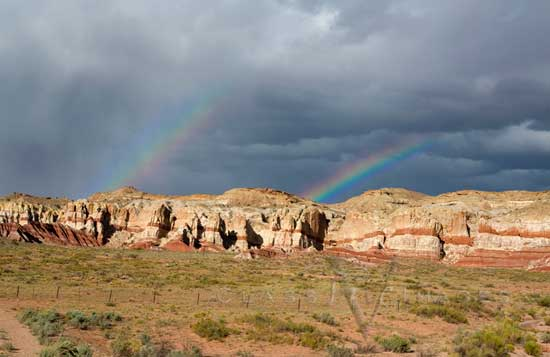 Double Rainbow 550