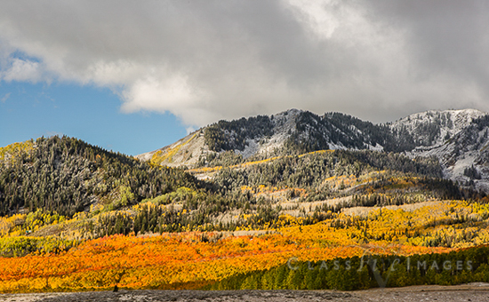 Fall Color In Guardsman Pass 550