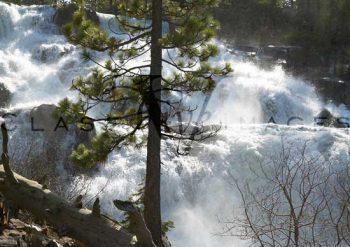 Glen Alpine Falls In Spring