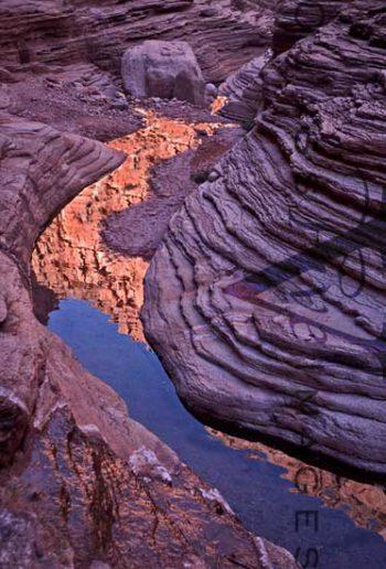 Havasu Creek Reflection