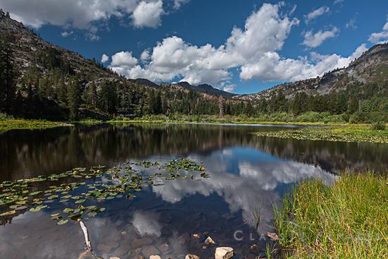 Lily Lake 550