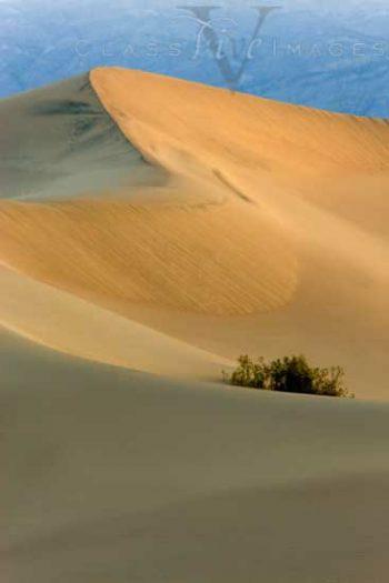 Sunrise On The Sand Dunes