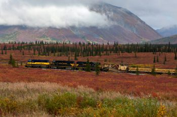 Train Through The Tundra