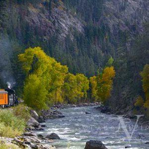Animas River Fall Color