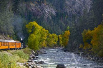 Animas River Fall Color