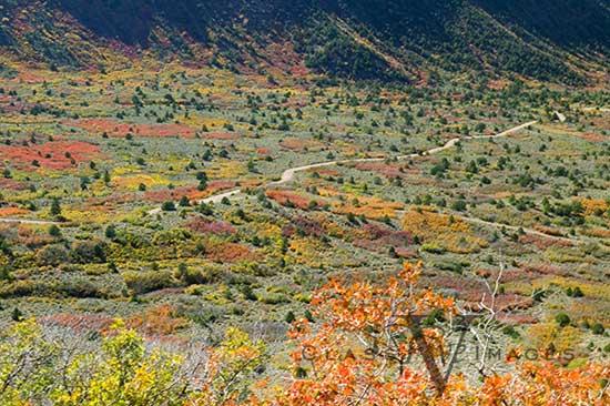 La Sal Loop Valley Carpet