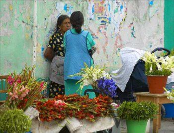 Mitla Flower Vendors